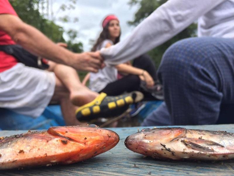 recetas-de-un-viajero-amazonas-14